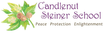 Candlenut Steiner School - Education Guide