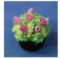 Choice Cake Decorating Centre - Education Guide