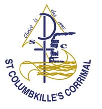 St Columbkille's Catholic Primary School - Education Guide