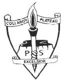 Collaroy Plateau Public School - Education Guide